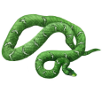 Boa Constrictor bebé - piel 5