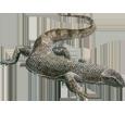 Varano negro adulto - piel 51