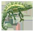 Camaleón africano adulto - piel 72